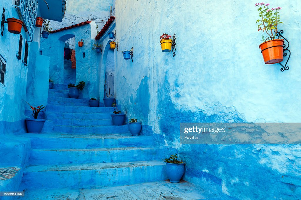 Blue staircase & colourful flowerpots, Chefchaouen,Morocco,North Africa : Stock Photo