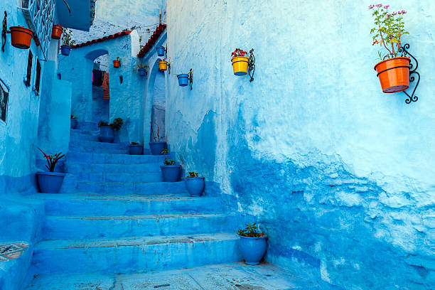 Blue Staircase & Colourful Flowerpots, Chefchaouen,Morocco,North Africa Wall Art