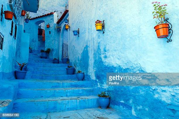 blue staircase & colourful flowerpots, chefchaouen,morocco,north africa - wereldreis stockfoto's en -beelden