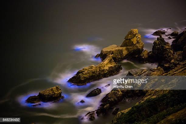 Blue Tears,Bioluminescent algae Noctiluca Scintillans