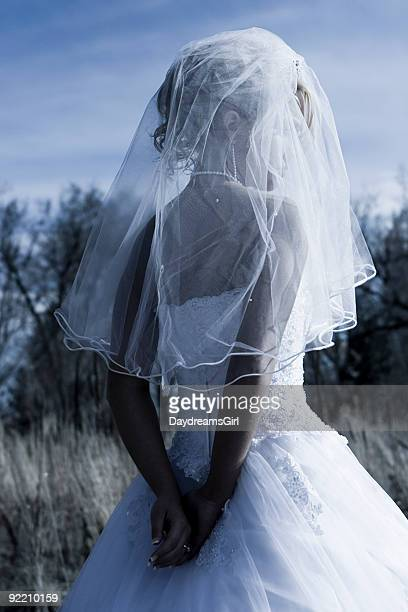 Blue Toned Image Back of Bride Outdoors Wearing Veil