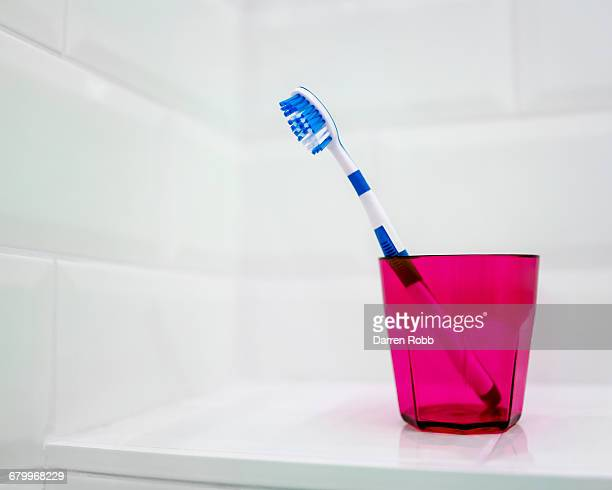 Blue toothbrush in pink toothbrush holder