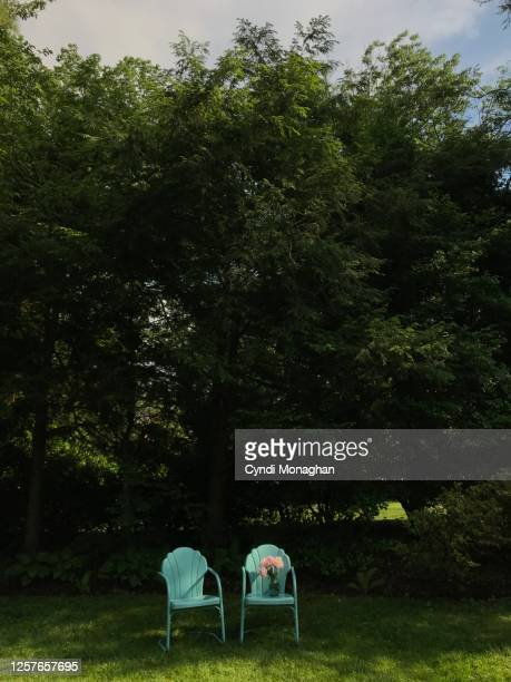 blue vintage chairs in the backyard - gras stock pictures, royalty-free photos & images