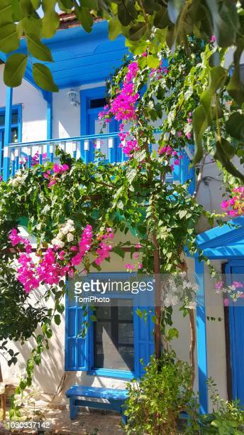 blue windows on white wall of mediterranean house - kas stock pictures, royalty-free photos & images