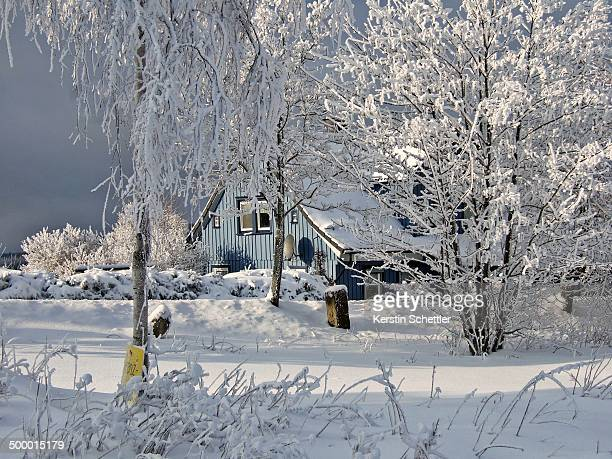 CONTENT] Blue wooden house in the Harz Mountains in winter near the former border between West and East Germany close to BraunlageHohegeiß