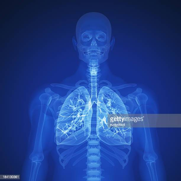 Blue X-ray of human lungs and upper torso