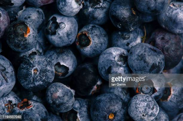 blueberries abstract - ian gwinn stock pictures, royalty-free photos & images