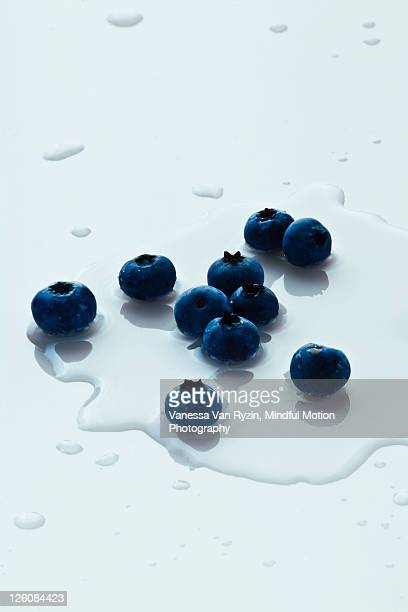 blueberries in water - vanessa van ryzin stockfoto's en -beelden