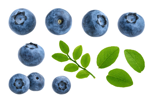 Blueberries isolated on white background without shadow set 917335946