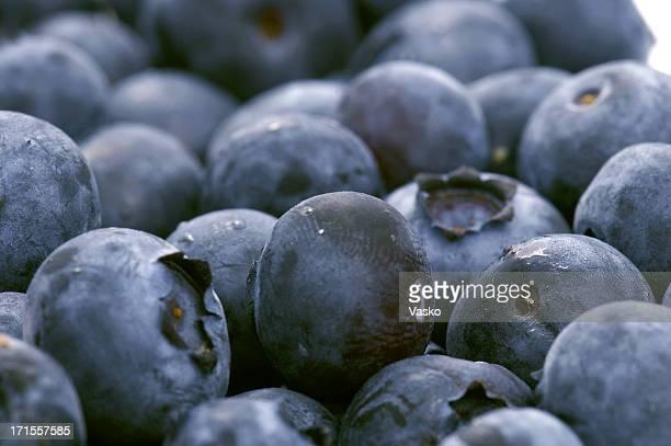 Blueberries Macro 2