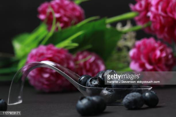 blueberries on clear spoon - nanette j stevenson stock photos and pictures