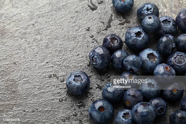 Les bleuets sur fond gris ardoise