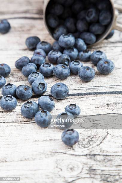 Blueberries on wood