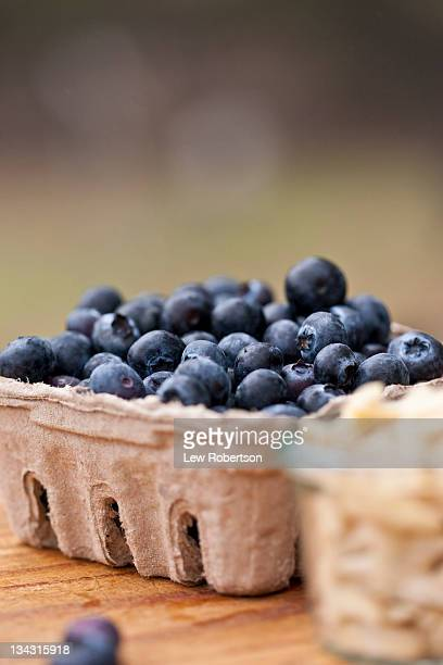 blueberries - carton stock pictures, royalty-free photos & images