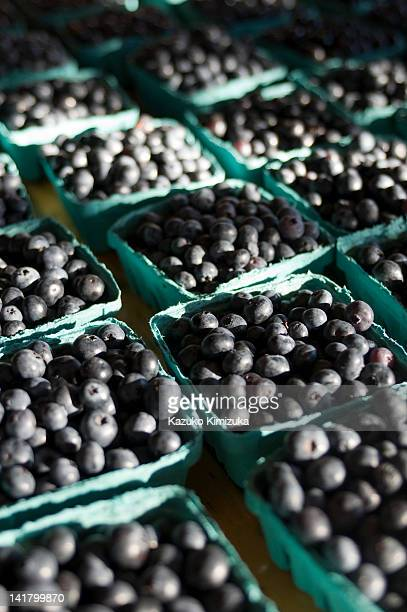 blueberries - kazuko kimizuka stock pictures, royalty-free photos & images