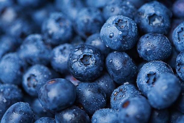 blueberries - 藍莓 個照片及圖片檔