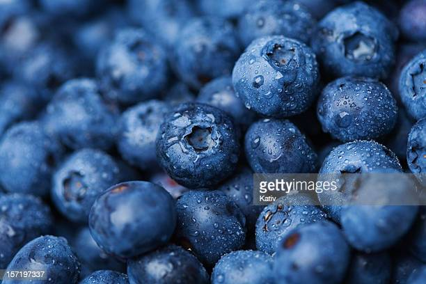 blueberries - close up stockfoto's en -beelden