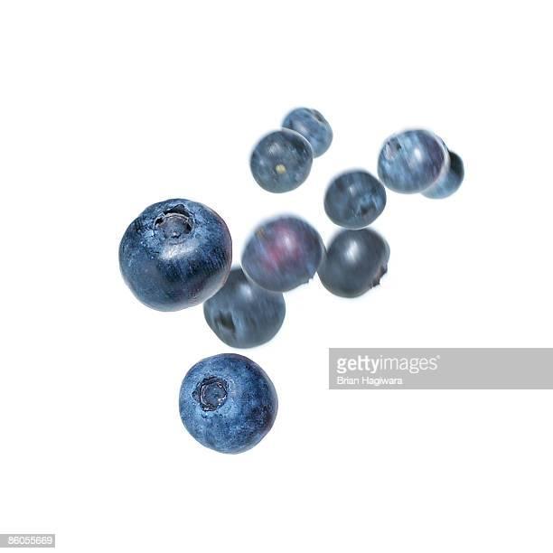 blueberries - ブルーベリー ストックフォトと画像