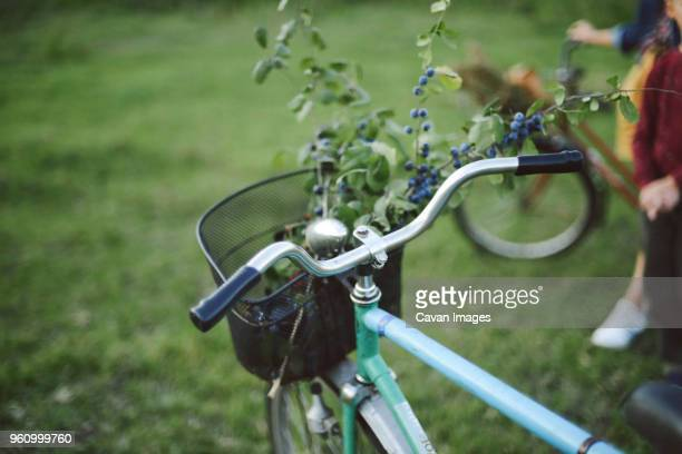 blueberries with twigs in bicycle basket against mother and son on field - montare foto e immagini stock