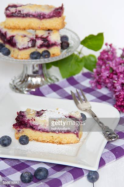 Blueberry cake with coconut