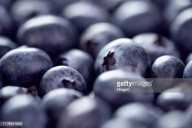 blueberry fruit - berry stock pictures, royalty-free photos & images