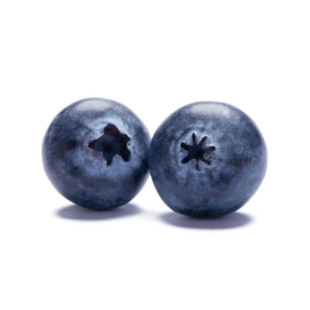 blueberry isolated on white background - 藍莓 個照片及圖片檔