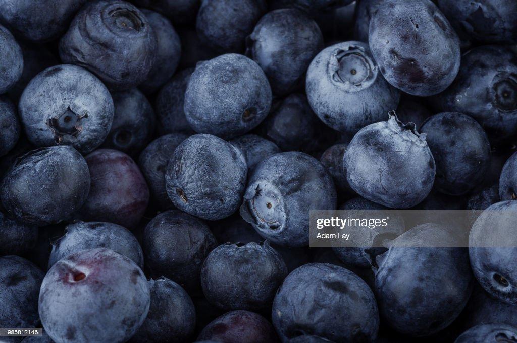Blueberry macro : Foto de stock
