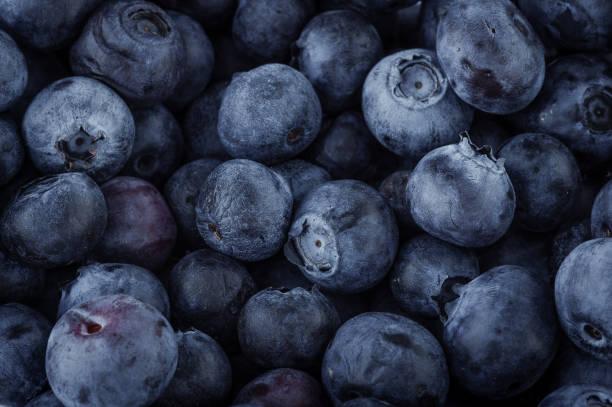 blueberry macro - 藍莓 個照片及圖片檔