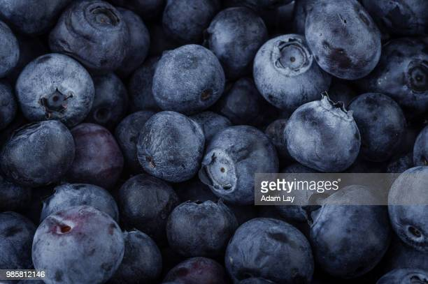 blueberry macro - berry stock pictures, royalty-free photos & images