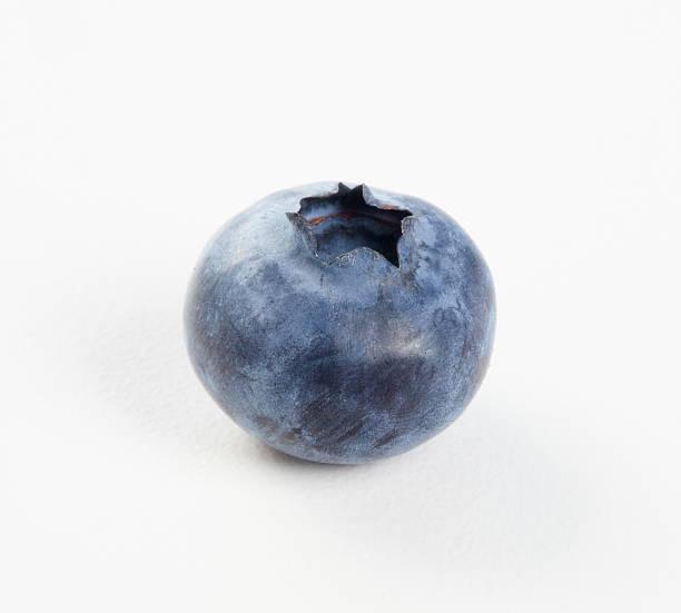 blueberry - 藍莓 個照片及圖片檔