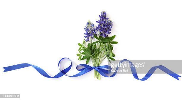Bluebonnet Bouquet