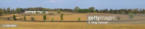 bluegrass region - lexington - kentucky - lexington kentucky stock pictures, royalty-free photos & images