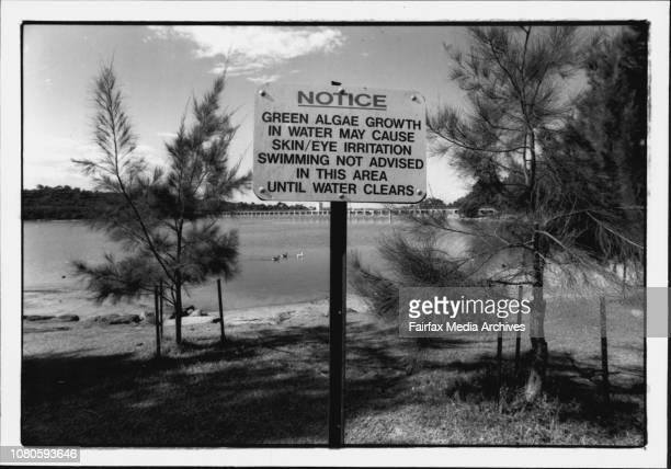 BlueGreen algae outbreak in Manly damBrian Scarsbrick CEO of land care Australia Ltd March 29 1993