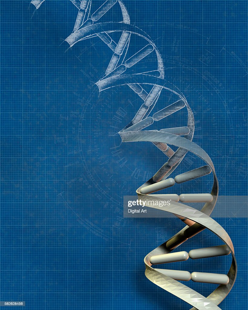 Dna blueprint stock photo getty images dna blueprint stock photo malvernweather Images
