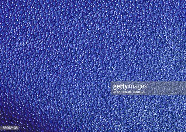 Blue-purple textured surface, full frame