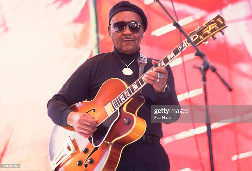 Floyd McDaniel On Stage At The Chicago Blues Fest : News Photo