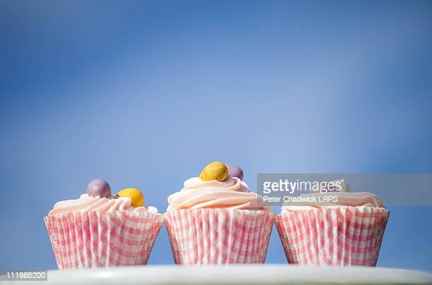 Bluesky cupcakes
