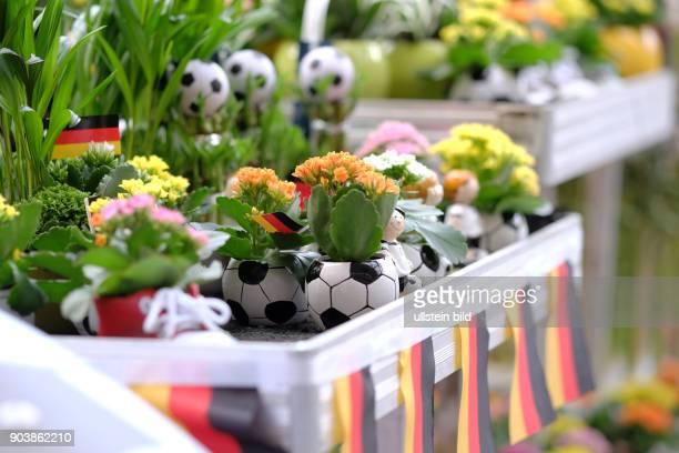Blumentöpfe in Fussballform in einem Berliner Baumarkt anlässlich der FußballEuropameisterschaft 2016