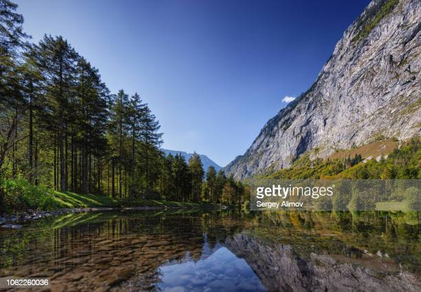bluntausee lake wooded shore, austria - steep stock photos and pictures