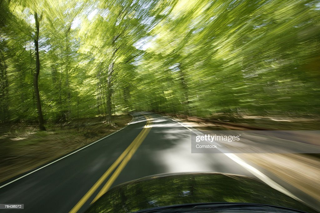 Blur of trees from car driving on road : Stockfoto