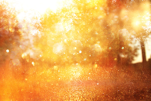 blurred abstract photo of light burst among trees and glitter golden bokeh lights. 1061974964