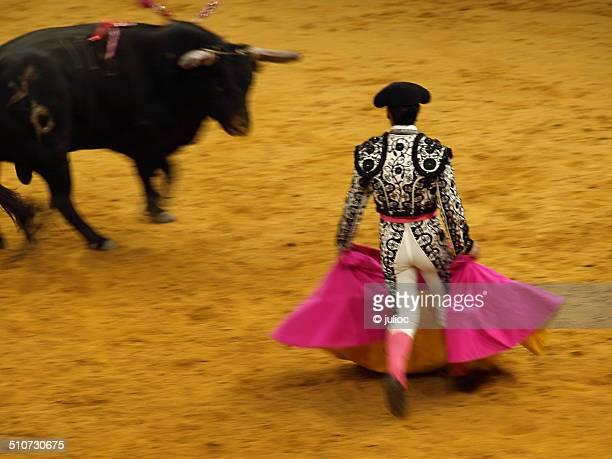 Blurred bullfight