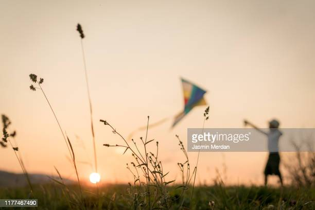 blurred child with kite on meadow - kite toy stock pictures, royalty-free photos & images