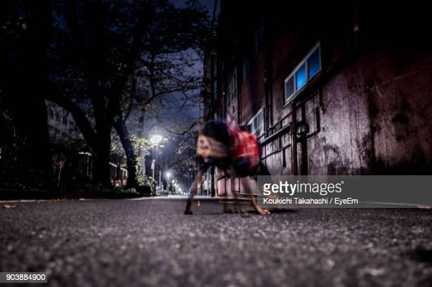 Blurred Motion Of Dog On Street At Night