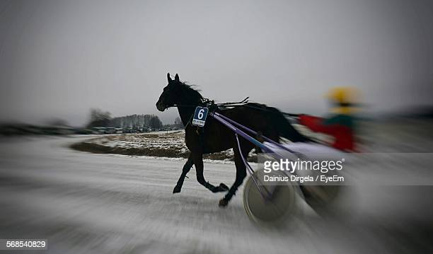 Blurred Motion Of Harness Racing On Snow Covered Track
