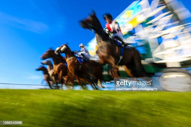 blurred motion of horse racing - racehorse stock pictures, royalty-free photos & images