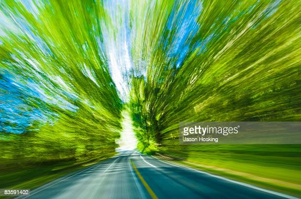 blurred motion view of road and trees - on the move stock pictures, royalty-free photos & images