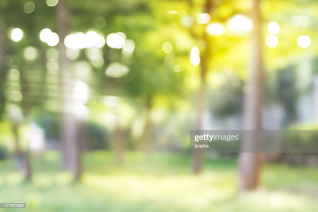 Free Outdoor Background Images, Pictures, And Royalty-Free