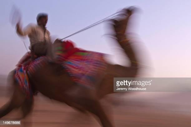 blurred scene of man riding camel - camel active stock-fotos und bilder