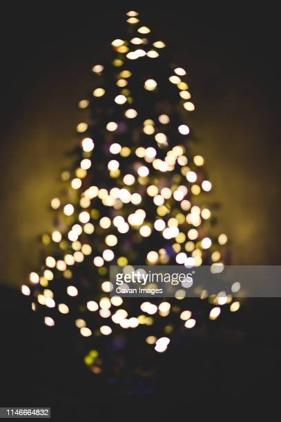 World S Best String Lights On White Stock Pictures Photos
